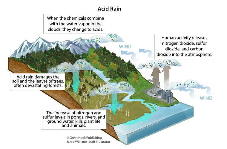acid precipitation affects stone in two Acid precipitation affects stone primarily in two ways: dissolution and alteration when sulfurous, sulfuric, and nitric acids in polluted air react with the calcite.